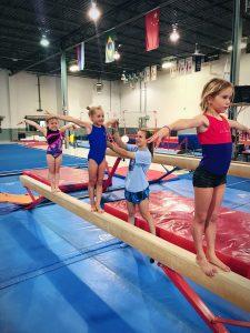 euro stars gymnastics plymouth mi
