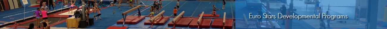 Developmental Gymnastics Classes - Schedule Plymouth MI