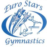 Euro Stars Gymnastics - Gymnastics in Plymouth Michigan