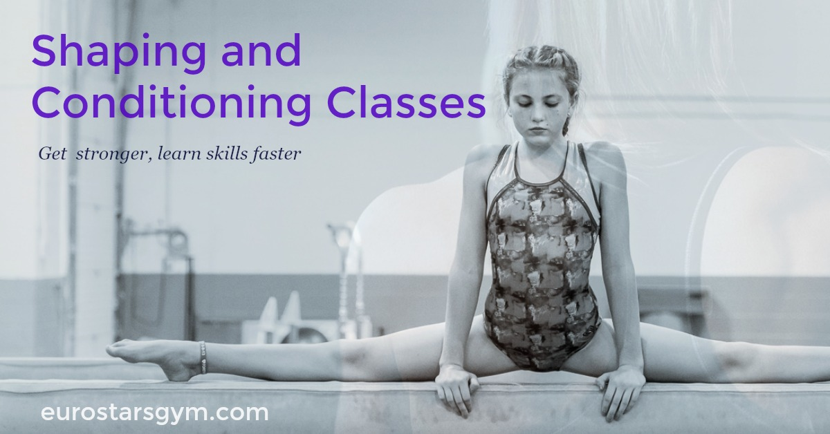 gymnastics conditioning classes plymouth mi